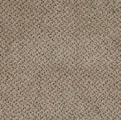 Carpete Baltimore 500 Plaza