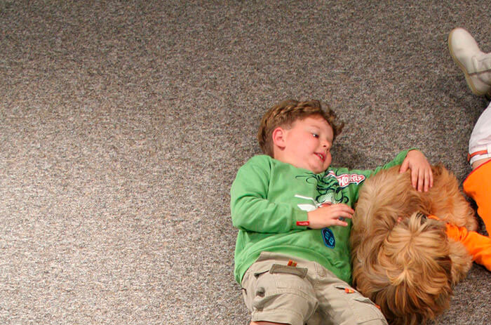 Carpete New Wave Instalado